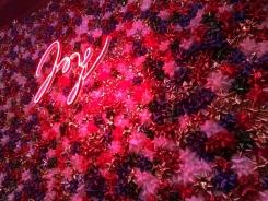 Joy Fotor